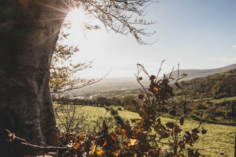 Belfast : randonner à Cave Hill à l'automne