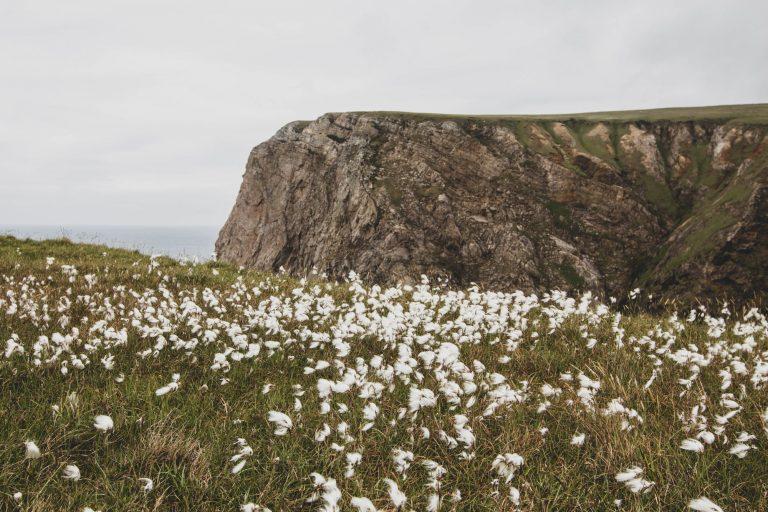 Comté de Mayo : Downpatrick Head et Benwee Head