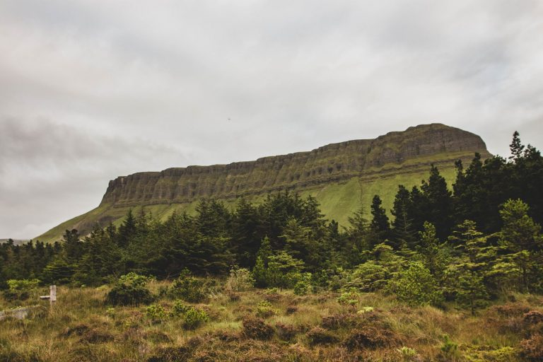 Benbulben Forest Walk : balade au cœur de l'Irlande